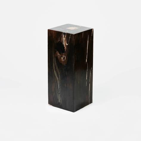 Andrianna Shamaris — Petrified Wood Column - 25